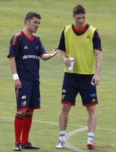 David Villa y Fernando Torres con la selección.
