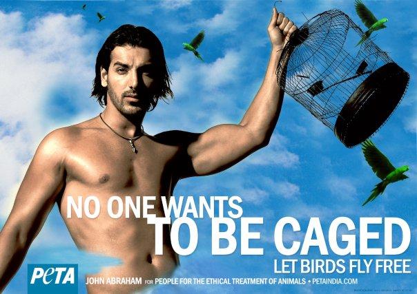 No los encarceles, déjalos vivir en libertad