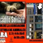 Mercadillo en Segovia