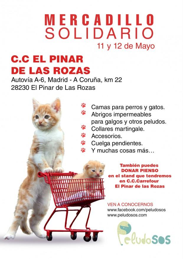 CARTEL_CC_EL_PINAR_DE_LAS_ROZAS01