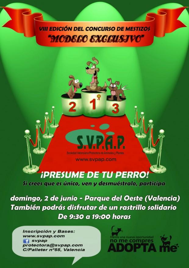 cartel concurso mestizos 2013