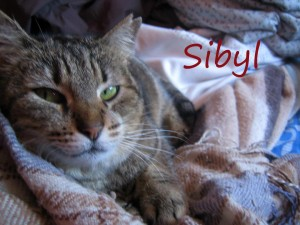 Sibyl_marzo