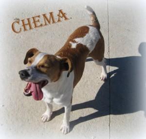 Chema (7)