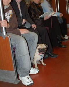 Esta foto la hice en  el metro de Berlín en 2006.