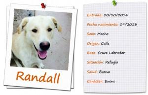 randall-ficha