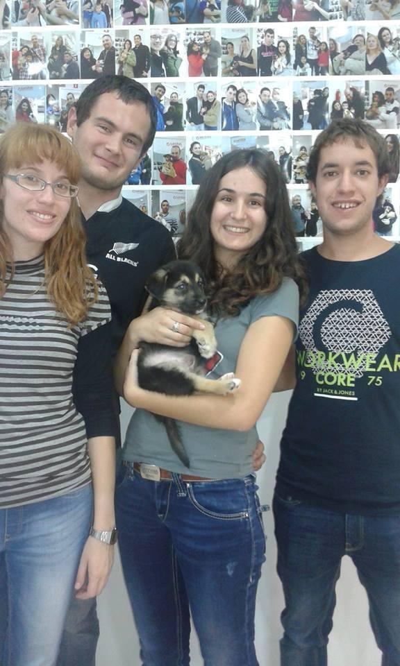 Una de las 2.000 adopciones conseguidas en las tiendas.