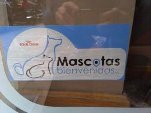 La librería 'La buena letra', en Gijón. Uno de esos sitios que molan.