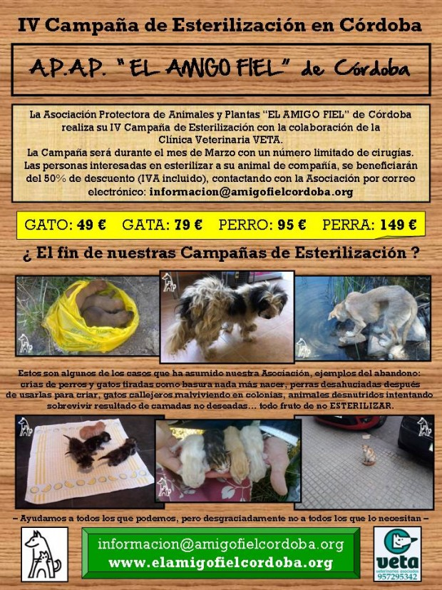 Cartel IV CAMPAÑA
