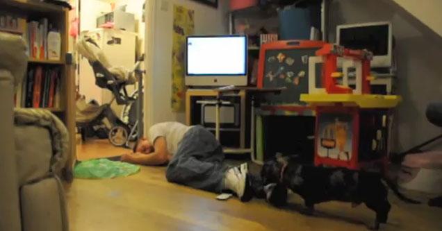 Insólito: Entró a una casa a robar, se quedó dormido y lo detuvieron Blog-elladrondormido
