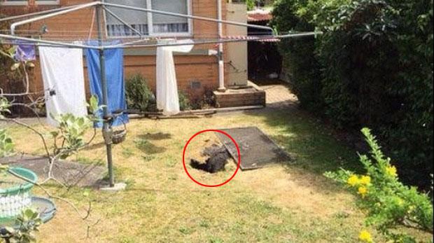 agujero_australia2