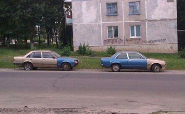 cochesb