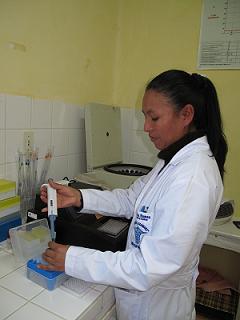 Una trabajadora del laboratorio de detección realiza un examen de laboratorio. Foto: Reszi Agramont/AeA