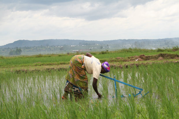 Fotos MA Rz Burundi 14 (42)