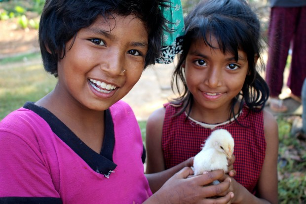 Melina Pyakhurel, 10, plays with a chicken with her 8-year-old sister Monica in Gerkhutar Village Development Committee in Nuwakot, one of the 12 highly earthquake-affected districts in Nepal. Photo by Naresh Newar for UNICEF