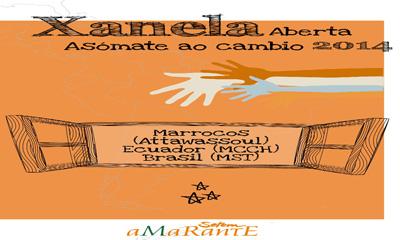 Cartel del programa educativo de Amarante.