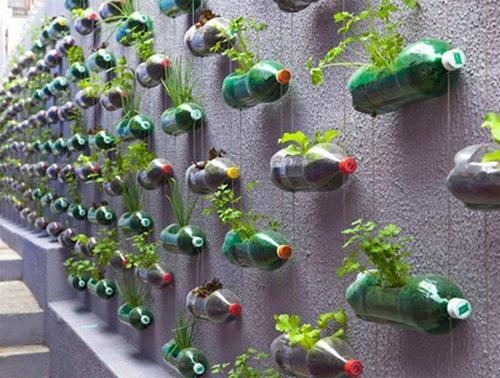 Huert vertical con botellas de plástico