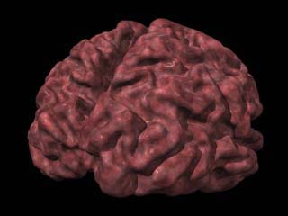 Imagen 3D de un cerebro afectado por el Alzheimer. / Isaac Mao