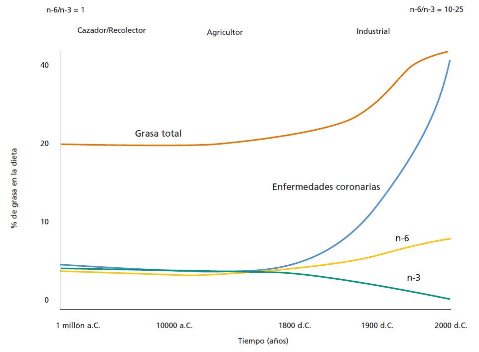 Reconstrucción de los cambios en la contribución de grasas poliinsaturadas de origen terrestre (n-6) y marino (n-3) a la dieta humana a lo largo de la historia de nuestra especie, y del incremento en el porcentaje de nuestras calorías que se derivan de las grasas. / Leaf and Weber, Am. J. Clin. Nutr. 1987, 45: 1048-1053.