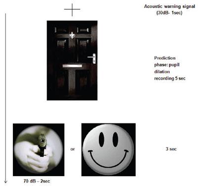 Protocolo experimental de Tressoldi. A los sujetos se les muestra una pantalla con una puerta cerrada tras la que luego aparece un arma disparando o un 'smiley'. La dilatación de las pupilas se mide antes del estímulo. Patrizio Tressoldi / Universidad de Pádua.