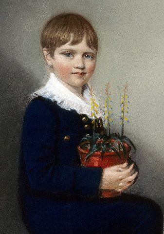 El Darwin niño, con siete años, apuntando maneras de naturalista (1816). Pintura de Ellen Sharples.