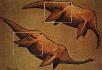 Dibujos de Nessie realizados por Peter Scott basándose en la presunta imagen de una aleta del monstruo (ver más abajo). Peter Scott vía NHM.