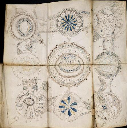 El diagrama de rosetas del manuscrito Voynich. Imagen de la Universidad de Yale.