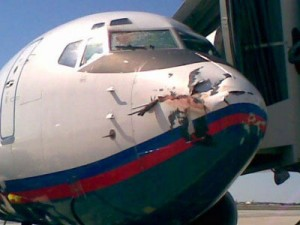 Daños en un avión causados por el impacto de aves. Imagen de Nico deb / Wikipedia.