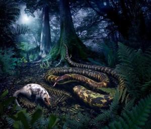 Reconstrucción artística del posible antepasado común de todas las serpientes actuales, en el Cretácico. Imagen de Julius Csotonyi.