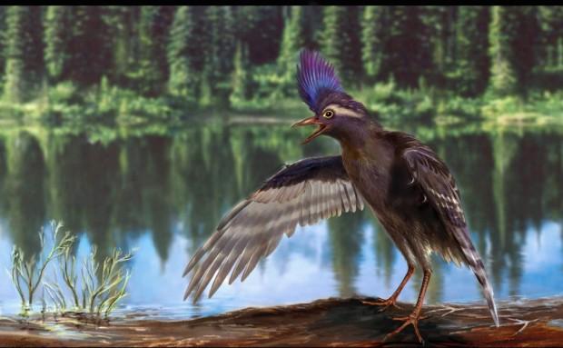 Reconstrucción del 'Archaeornithura meemannae', un ave del Cretácico temprano. Imagen de Zongda Zhang.