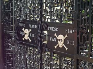 Entrada al Poison Garden en los jardines de Alnwick. Imagen de geograph.org.uk / Wikipedia.