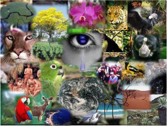 Resultado de imagen de La Vida en el planeta Tierra