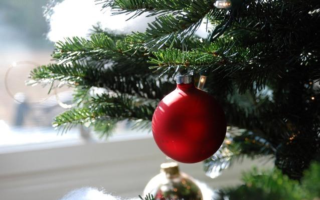 Rboles de navidad naturales o de pl stico for Arbol de navidad con bolas rojas