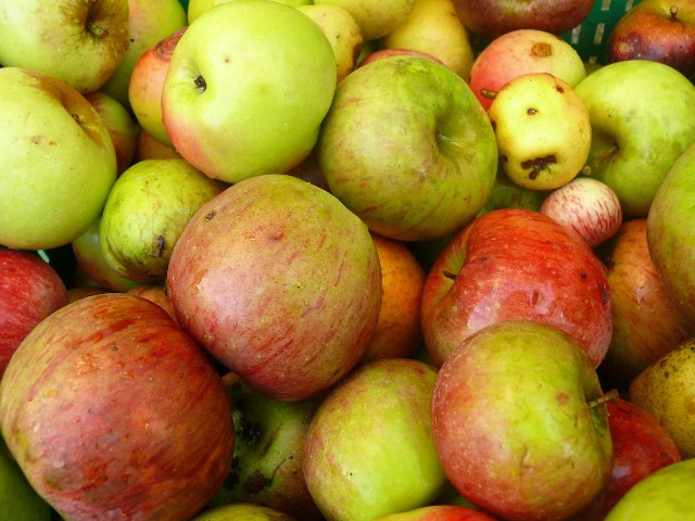 Manzanas la cr nica verde - Pure de castanas y manzana ...