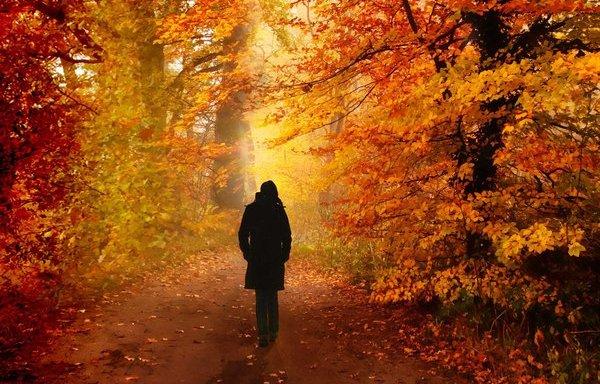 Resultado de imagen para recuerdo un triste otoño