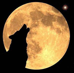 ayer fue luna llena la luna de febrero la de los lobos desde ahora y