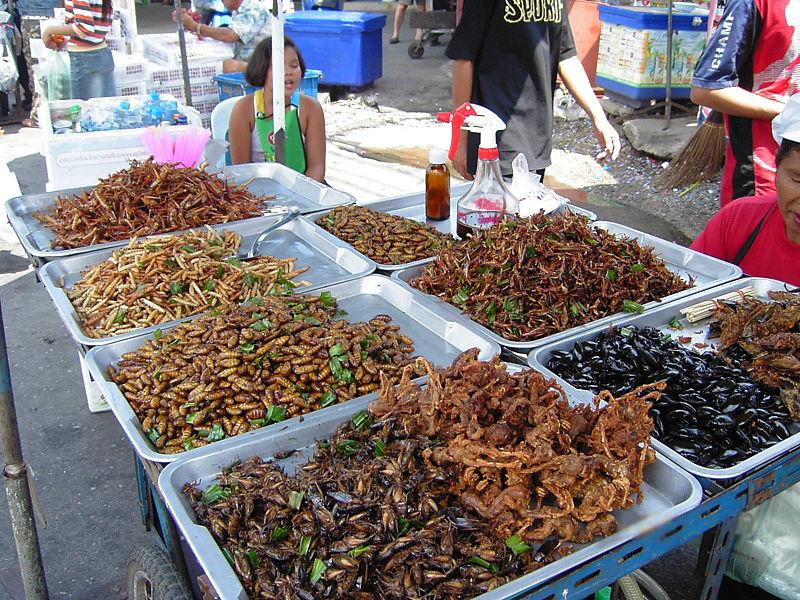 Mercado de insectos