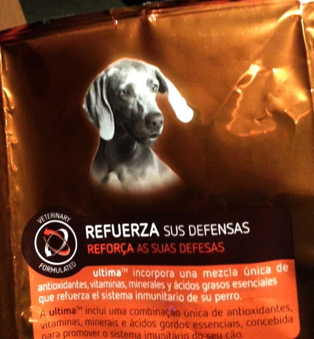 Pienso para perros alimenta tus defensas