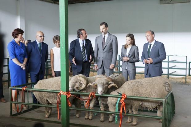 Letizia, mirando con compasión a los carneros. (Jero Morales / EFE)