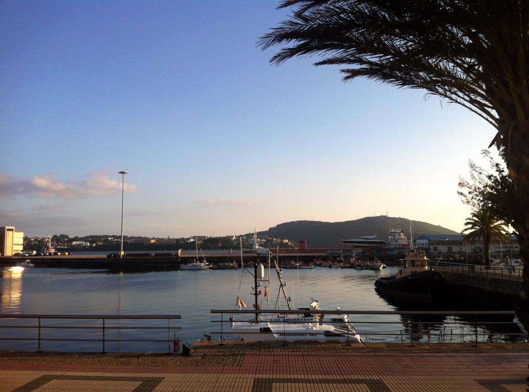 Puerto de Ferrol, lleno de palmeras
