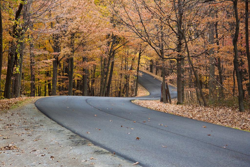 Carretera al otoño... Créditos: wsilver - flickr