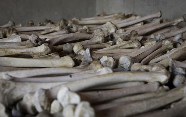 Restos de víctimas en las escuelas Murambi, Ruanda. Marzo 2014. Foto: Hernán Zin