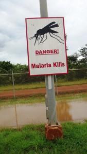 Póster malaria kills
