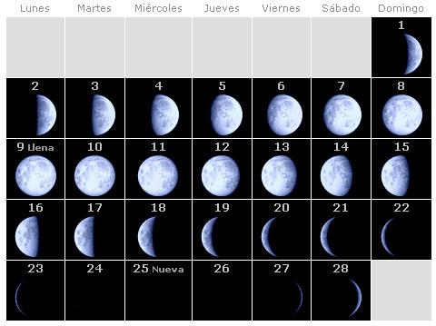 Dicen que nacen m s ni os con luna llena madre reciente for Hoy hay cambio de luna