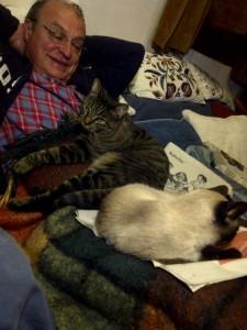 Pilo junto a Truso (diminutivo de Intruso), otro gato callejero recién  adoptado.