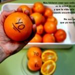 Media naranja. Imagen de Fundación Luz Casanova