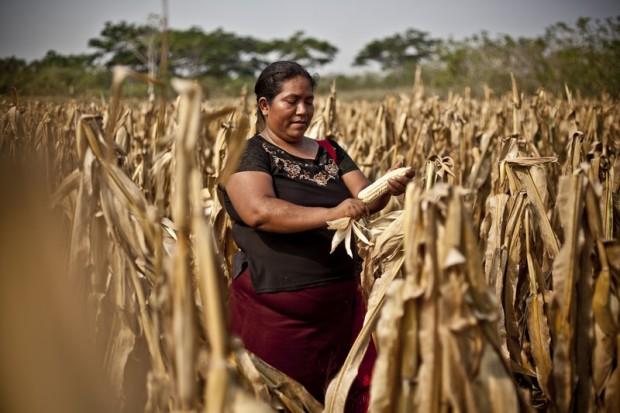 Las mujeres rurales cultivan el 80% de nuestros alimentos y son propietarias del 1% de la riqueza mundial (c) Pablo Tosco / Oxfam Intermón