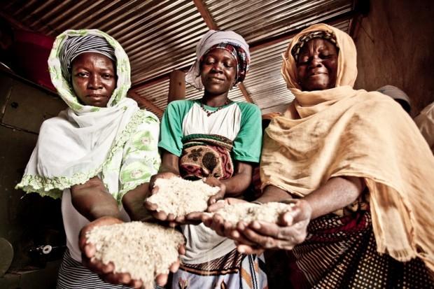 Invertir en mujeres es rentable. En la foto, mujeres de una cooperativa de Burkina Faso que producen 700 toneladas de arroz al año. (C) Pablo Tosco / Oxfam Intermón