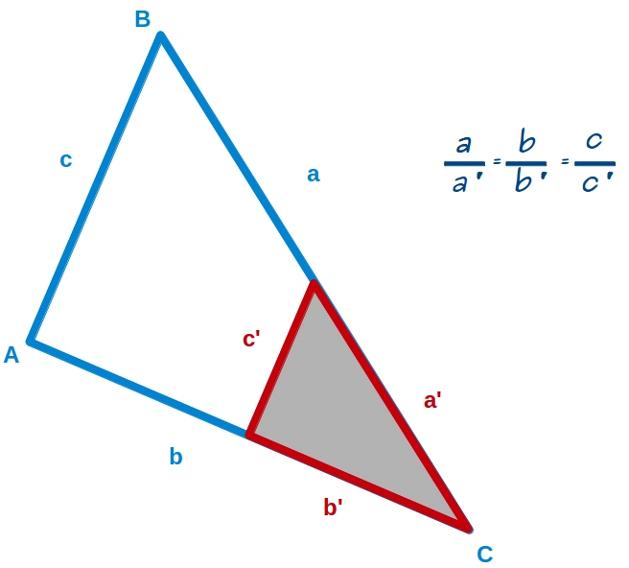 geometría | Mati, una profesora muy particular