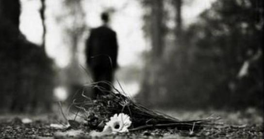 Flores Contra El Olvido