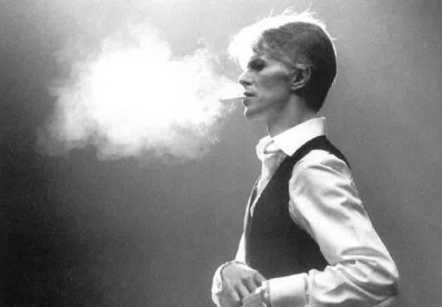 bowie cigar